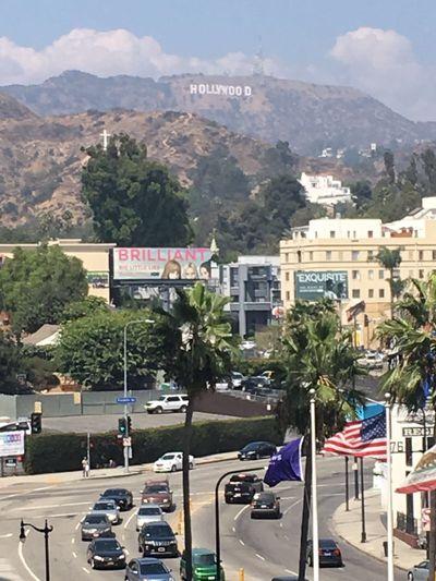 Mature Escort in Santa Clara California